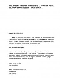 Modelo De Apelação Trabalho Acadêmico Bruna Alencar