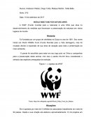 WWF (World Wide Fund for Nature)